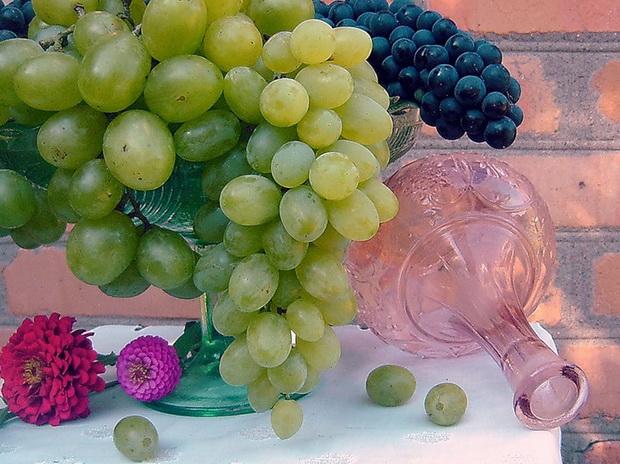 Сорт винограда: Ларни мускатная