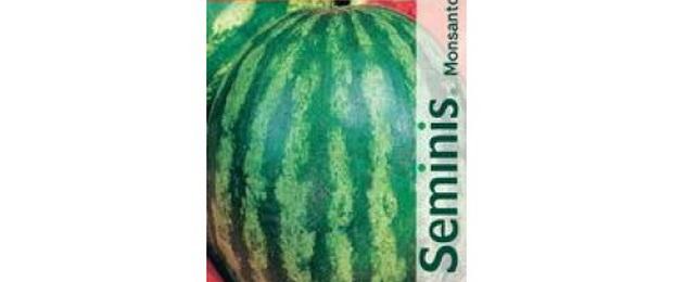 Сорт арбуза: Мелания   f1