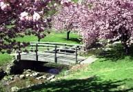 Мосты и помосты