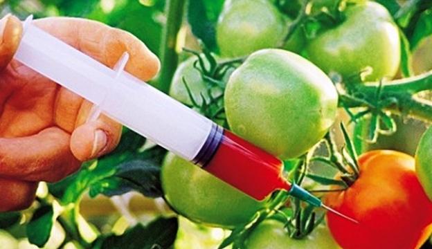 Новая технология обнаружения ГМО в продуктах питания