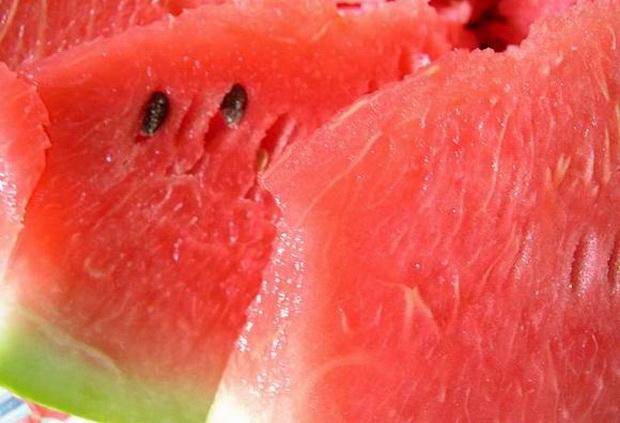 Сорт арбуза: Память холодова