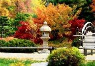 Планирование японского сада