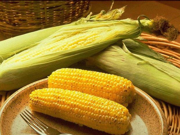 Сорт кукурузы: Рм 501