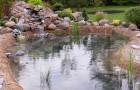 История создания садов с водоемами