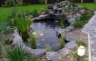 Классическая архитектура водоема