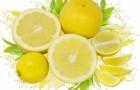 Маска толокняно-лимонная