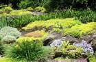 Мощное удобрение из смеси камня и органических отходов