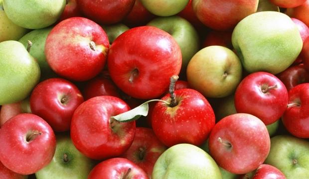 Представлены новые сладкие сорта яблок