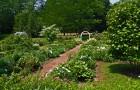 Сад по задернением