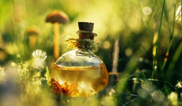Секрет многих лекарственных растений в флавонои