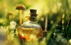 Секрет многих лекарственных растений в флавоноидах