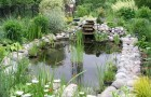 Уход за естественным водоемом