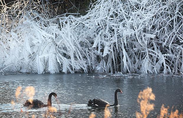 Уход за водоемом зимой