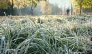 Защита сада от заморозков