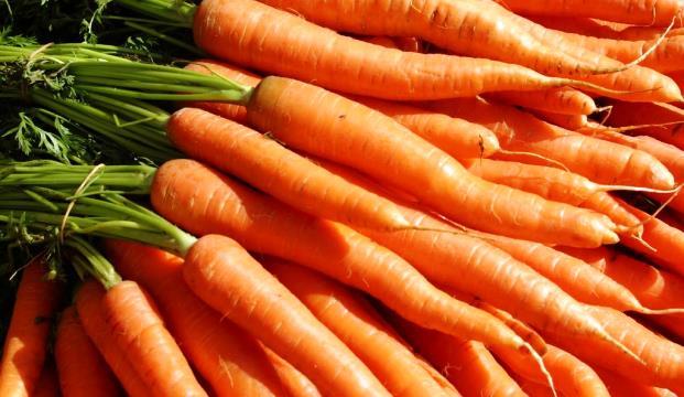 А что если морковь может вылечить рак?
