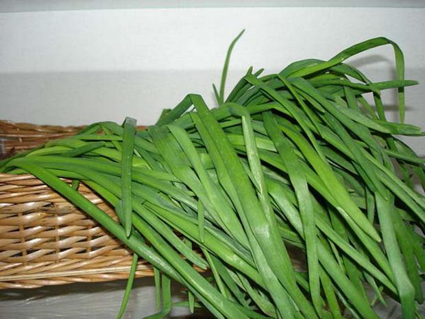 Сорт лука батуна: Изумрудный