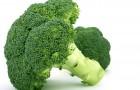 Сорт капусты брокколи: Монтоп f1