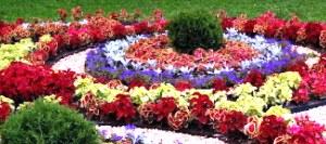 Построение цветников