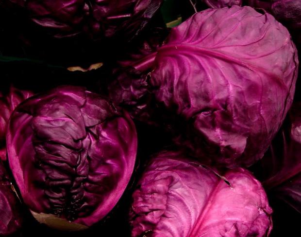 Сорт капусты краснокочанной: Редма рз   f1