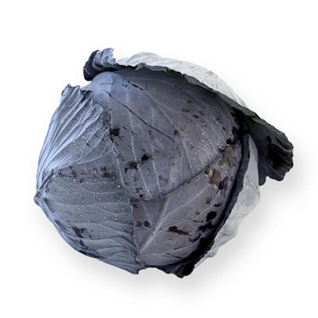 Сорт капусты краснокочанной: Родима   f1