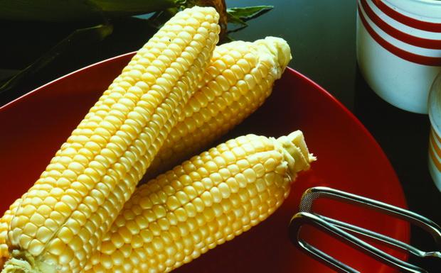 Сорт кукурузы сахарной: Шеба р
