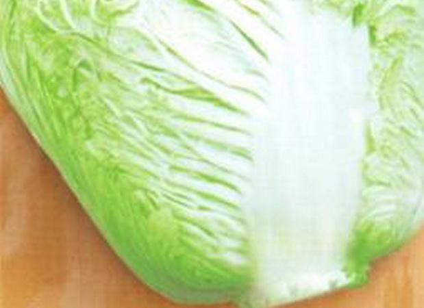 Сорт капусты пекинской: Сентябрина   f1