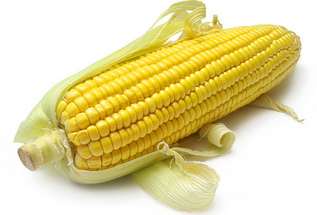 Сорт кукурузы сахарной: Цукерка