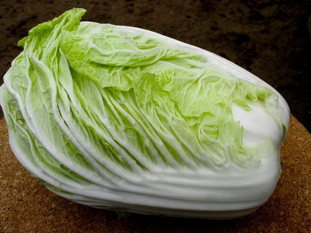 Сорт капусты пекинской: Весенний нефрит   f1