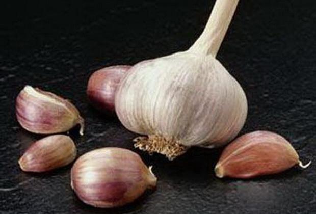 Сорт чеснока: Альтаир