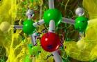 Фотосинтез разгадан путем математического анализа