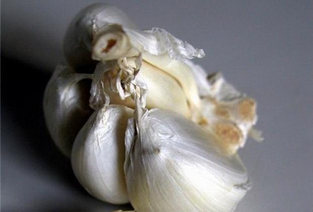 Сорт чеснока: Одинцовский юбилейный