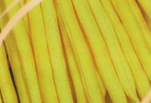 Сорт фасоли: Октава