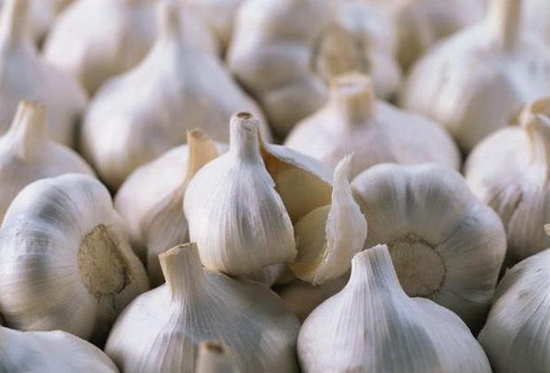 Сорт чеснока: Пермяк