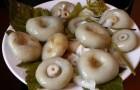 Квашение грибов