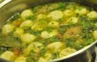 Суп с грибными «ушками»