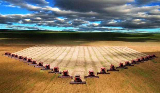 Во всем мире урожай собирают реже, чем возможно