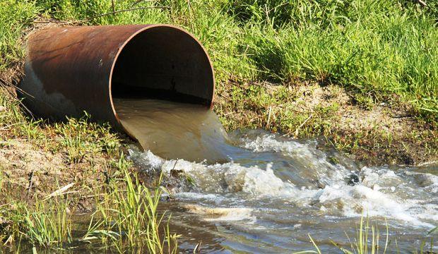 Биоуголь из сточных вод спасет урожайность