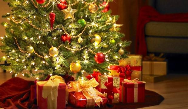 Куда деть ёлку после новогодних праздников?
