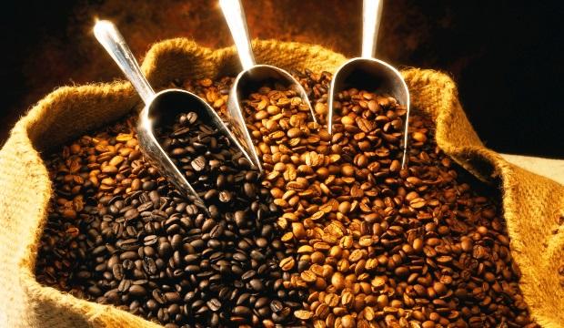 Почему выращивать кофе всё труднее