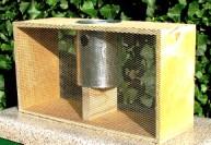 Приобретение пчел
