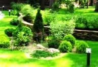 Проекты дизайна сада
