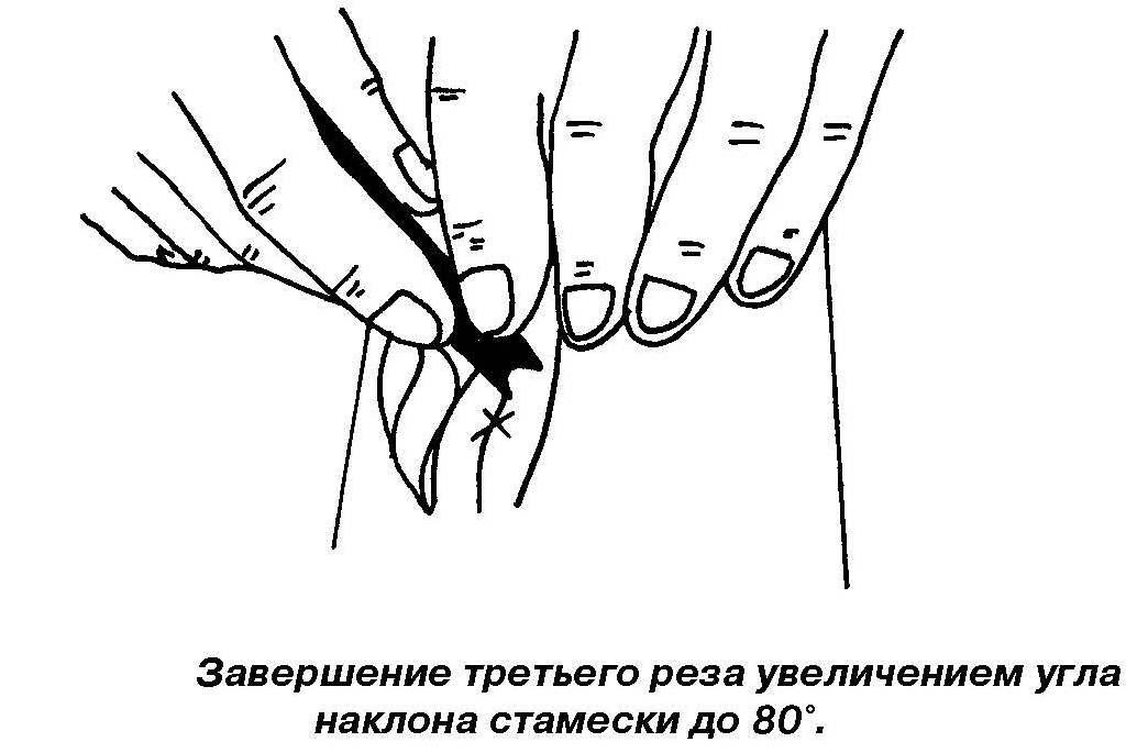1_Страница_33 - копия (2)