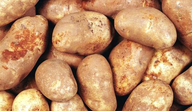 Новые жертвы картошки-убийцы