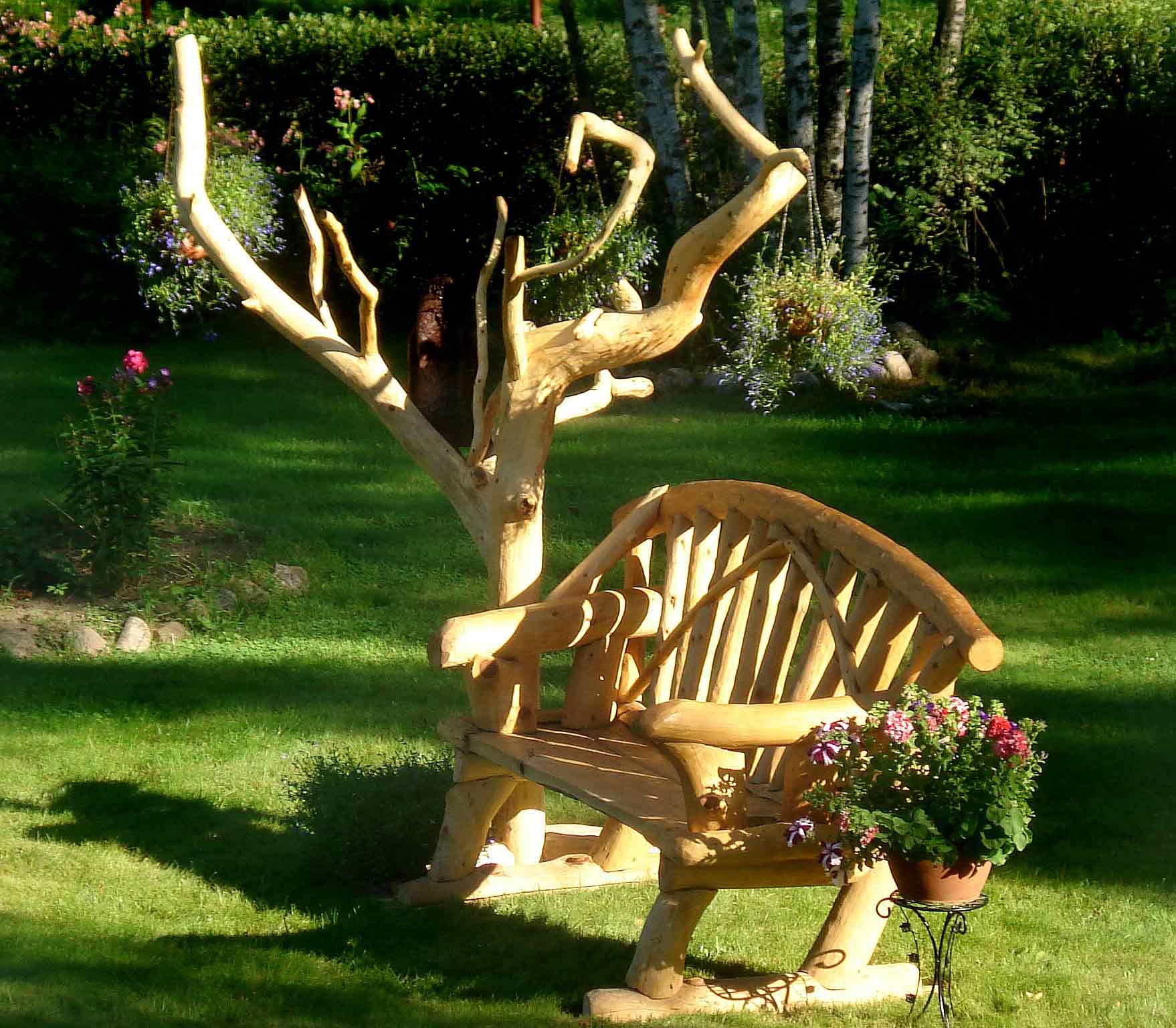 Деревья для дачи идеи фото