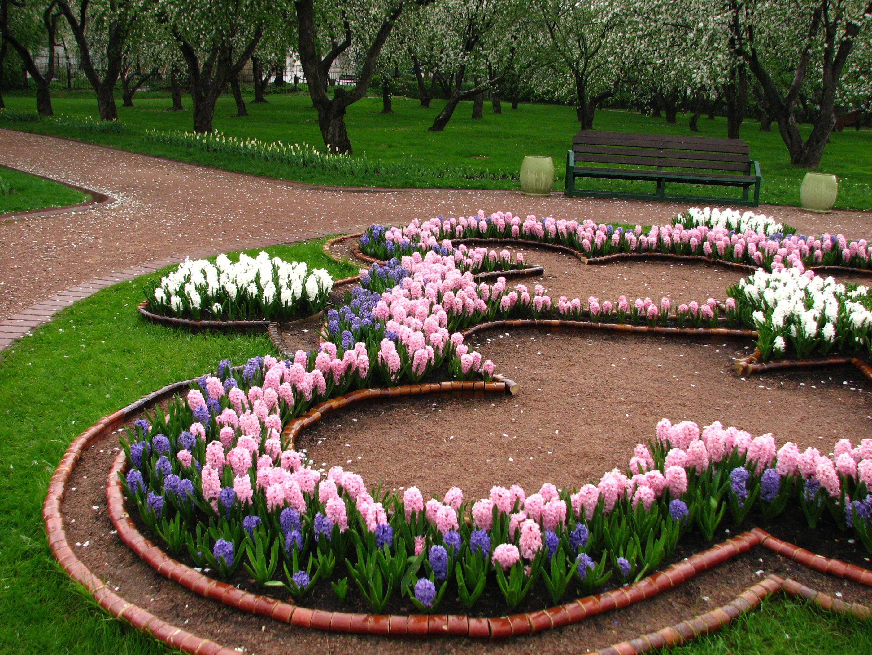 Фото красивых цветников своими руками