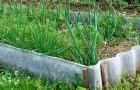 Как без стресса заложить первый огород
