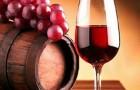 Применяют ли виноградные вина в лечебном питании?