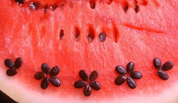 Расскажите, пожалуйста, о лечебных свойствах арбуза