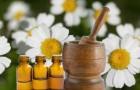 Диета и гомеопатия