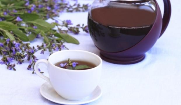 Гомеопатические средства, применяемые для лечения дурного запаха изо рта